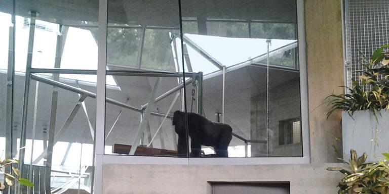 Stuttgart Zoo-Wilhelma